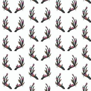 dark_coloured_antlers