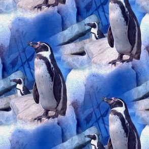 penguin on the rocks - painting effect