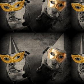 Bully Masquerade