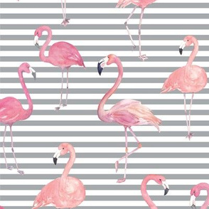 Summer Flamingos on Grey  Stripes
