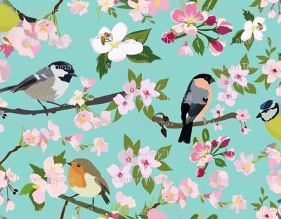 Blossom_and_Birds