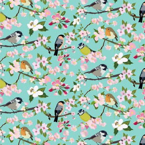 Blossom_and_Birds