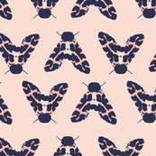 Moth Peach