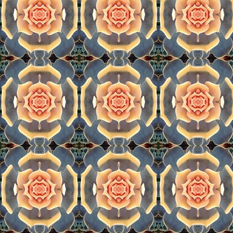 Rrsucculent21x4_shop_preview