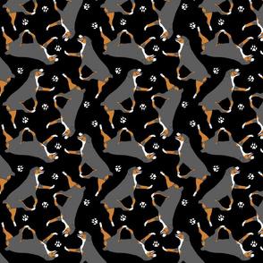 Trotting Entlebucher mountain dog and paw prints - black