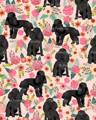 Toy Poodle black coat floral 3