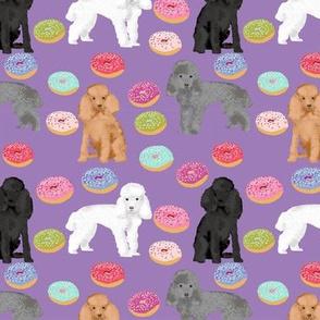 Toy Poodle mixed coat  donut purple