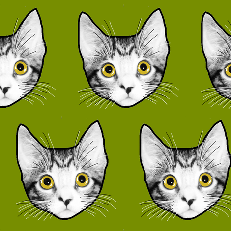 Meow! fabric by napolicreates on Spoonflower - custom fabric