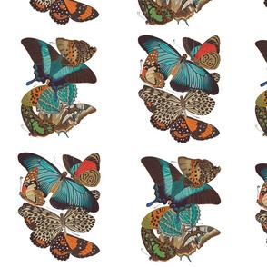 Rbutterfliesspoonflower_shop_thumb