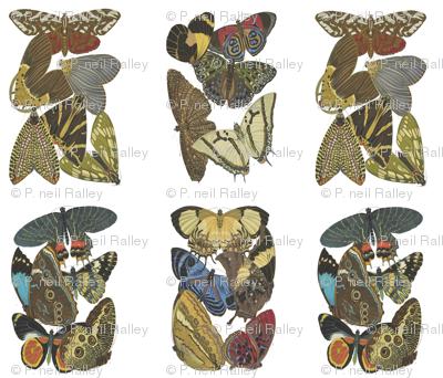 Rrfatquarterbutterfliesspoonflower_preview