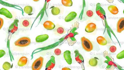 Fruits of Mexico with Quetzals