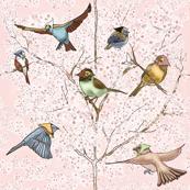 Country chicks  with Scarfs by Salzanos