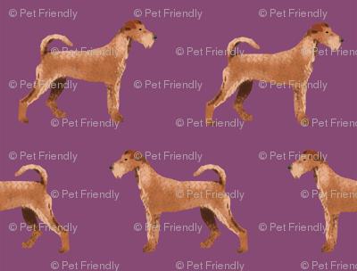 irish terrier fabric dog fabric - amethyst