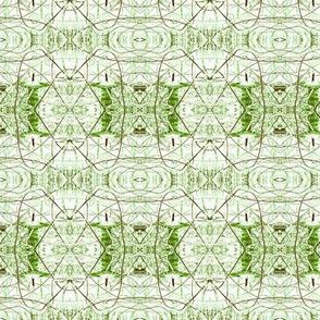 green billi