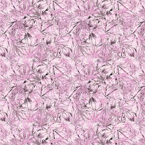 Pink Camomoto Leaves