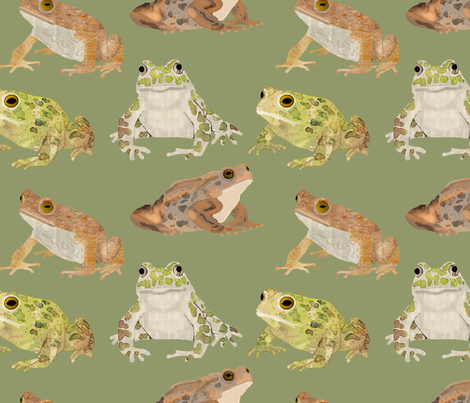 toadscatteredgreenbg fabric by amy_hadden on Spoonflower - custom fabric