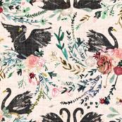 Fable Swan Damask (blush + black)