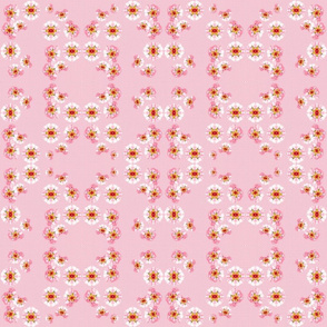 poseys on pink