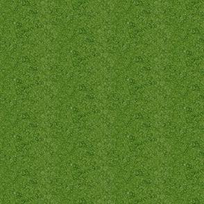 Fairy Moss - Green