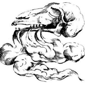 deer cows goats skulls anatomy anatomical studies death breath  vintage black white monochrome eerie macabre spooky bizarre morbid