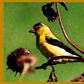 KRLG_GOLDFINCH_PLACEMATS
