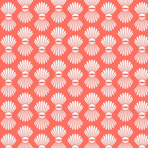 Scallop Shells on Coral