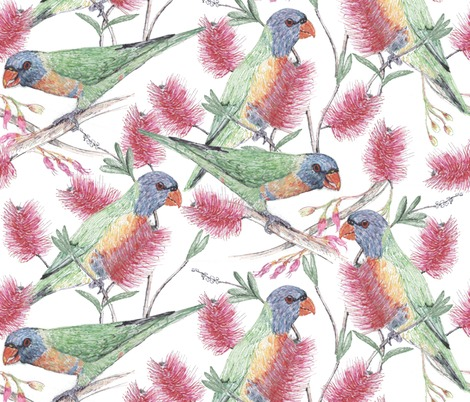 Rrrainbow_lorikeets_love_nectar_contest142178preview