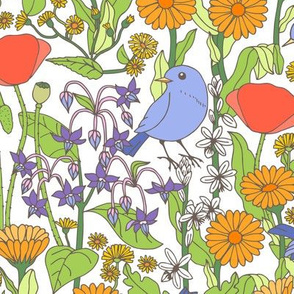Birds and Wild Blooms