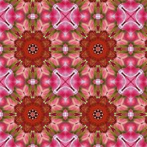Rubrum Lilies 0809