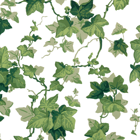 English Ivy ~ Bright  fabric by peacoquettedesigns on Spoonflower - custom fabric