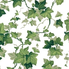 English Ivy ~ Bright