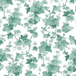 English Ivy ~ Pale Green