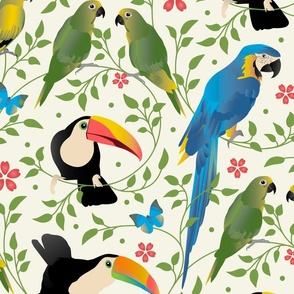 Exotic Parrots and Toucans