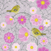 Cosmos flowers and birds