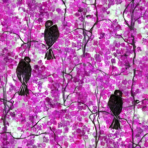 Crows and Cherry Blossoms