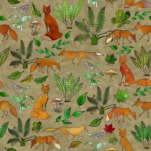 Foxes & Ferns