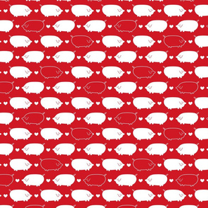 Red and White Pigs