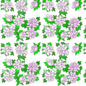 peony_soft_pink_