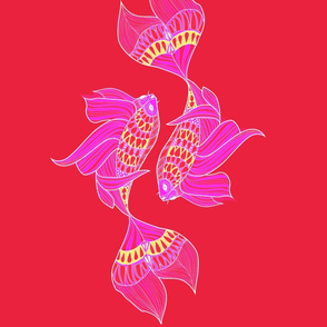 Koi_Fish_Pink_Background