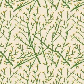 branchy - grass/sand/goldbud