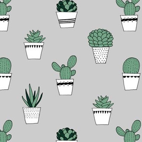 (small scale) potted succulents on grey