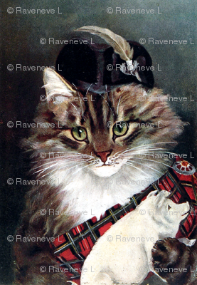 Cats Maine Coon Scotland Scottish traditional costumes sashes tartan chequered checked pigs pins brooches feathers hats clan chief Chieftain cultural cultures traditions vintage retro Anthropomorphic whimsical animals
