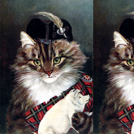 Cats Maine Coon Scotland Scottish traditional costumes sashes tartan chequered checked pigs pins brooches feathers hats clan chief Chieftain cultural cultures traditions vintage retro Anthropomorphic whimsical animals fabric by raveneve on Spoonflower - custom fabric