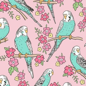Budgie Birds With Blossom Flowers on Pink