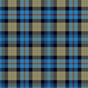"Mackenzie / Seaforth Highlander tartan, 10"", muted colors"