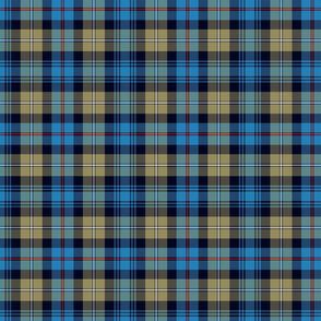 "Mackenzie / Seaforth Highlander tartan, 7"", muted colors"
