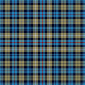 "Mackenzie / Seaforth Highlander tartan, 6"", muted colors"