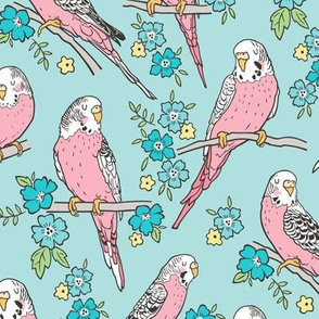Budgie Birds With Blossom Flowers on Light Blue