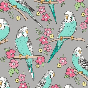 Budgie Birds With Blossom Flowers on Grey