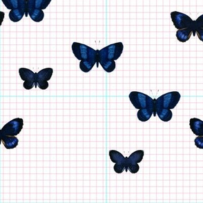 Blue butterfly  pink/mint grid